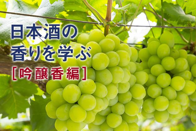 日本酒の香り成分とその表現方法について深く知っておこう!  - 日本酒の香りを学ぶ(吟醸香編)